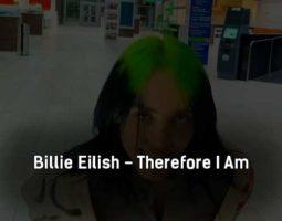 billie-eilish-therefore-i-am-klip-pesni