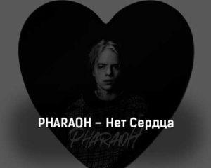 pharaoh-net-serdca-tekst-i-klip-pesni