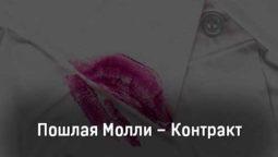 poshlaya-molli-kontrakt-tekst-i-klip-pesni