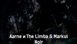 aarne-i-the-limba-markul-noir-tekst-i-klip-pesni