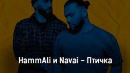 hammali-i-navai-ptichka-tekst-i-klip-pesni