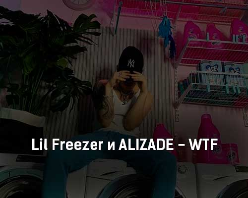 lil-freezer-i-alizade-wtf-tekst-i-klip-pesni