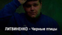 litvinenko-chernye-pticy-tekst-i-klip-pesni
