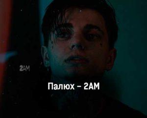 palyuh-2am-tekst-i-klip-pesni
