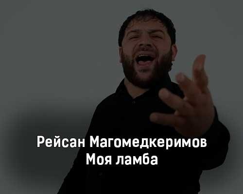 rejsan-magomedkerimov-moya-lamba-tekst-i-klip-pesni