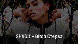 shadu-bitch-sterva-tekst-i-klip-pesni