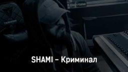 shami-kriminal-tekst-i-klip-pesni