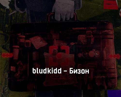 bludkidd-bizon-tekst-i-klip-pesni