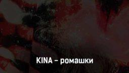 kina-romashki-tekst-i-klip-pesni