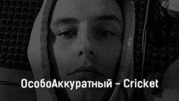 osoboakkuratnyj-cricket-tekst-i-klip-pesni