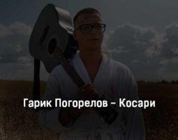 garik-pogorelov-kosari-tekst-i-klip-pesni