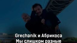 grechanik-i-abrikosa-my-slishkom-raznye-tekst-i-klip-pesni