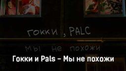 gokki-i-pals-my-ne-pohozhi-tekst-i-klip-pesni