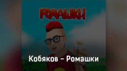 kobyakov-romashki-tekst-i-klip-pesni