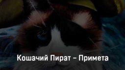 koshachij-pirat-primeta-tekst-i-klip-pesni