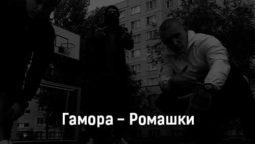 gamora-romashki-tekst-i-klip-pesni