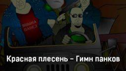 krasnaya-plesen-gimn-pankov-tekst-i-klip-pesni