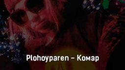 plohoyparen-komar-tekst-i-klip-pesni