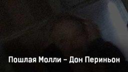 poshlaya-molli-don-perinon-tekst-i-klip-pesni
