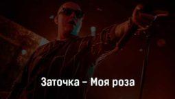 zatochka-moya-roza-tekst-i-klip-pesni