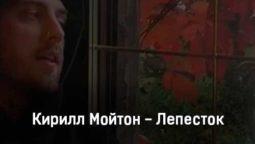 kirill-mojton-lepestok-tekst-i-klip-pesni