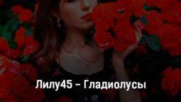 lilu45-gladiolusy-tekst-i-klip-pesni