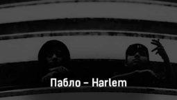 pablo-harlem-tekst-i-klip-pesni