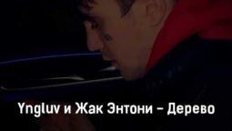 yngluv-i-zhak-ehntoni-derevo-tekst-i-klip-pesni