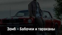 zomb-babochki-i-tarakany-tekst-i-klip-pesni